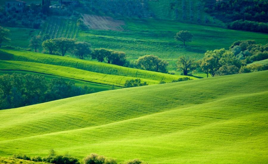 Web e Monferrato: questa promozione si ha dafare!